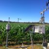 Maize_Echuca_Groundstations