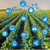 COALA enabling Platform and DIAS integration