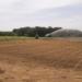 Precision-irrigation-COALA-project